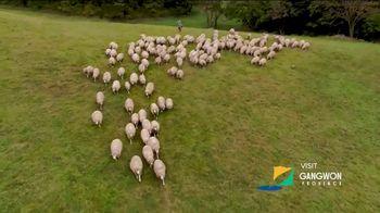 Gangwon Tourism TV Spot, 'Daegwallyeong Sheep Ranch' Feat. Daniel Henney