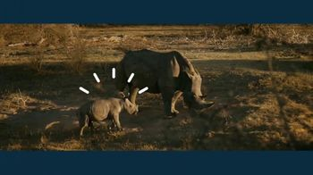 IBM Cloud TV Spot, 'Smart Wildlife'