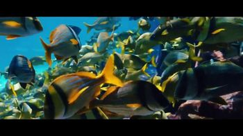 Atlantis TV Spot, 'Endless Flow: April' - Thumbnail 5