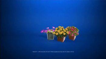 Lowe's Spring Black Friday TV Spot, 'Good Backyard: Pint Annuals' - Thumbnail 8
