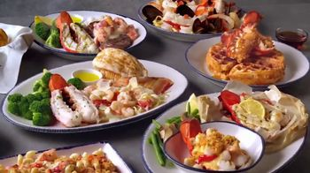 Red Lobster Lobsterfest TV Spot, 'Most Lobster Dishes of the Year'