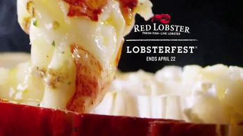 Red Lobster Lobsterfest TV Spot, 'This. Is. Lobsterfest.' - Thumbnail 10