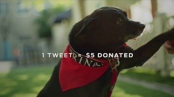 Purina TV Spot, 'Every Dog Is a Star' Featuring Maria Menounos