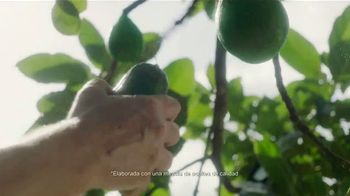 Hellmann's Mayonnaise TV Spot, 'Sabor irresistible' [Spanish]