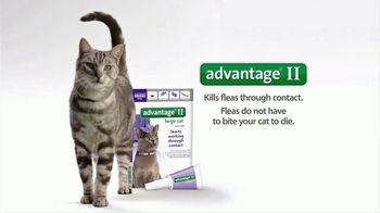Bayer Advantage II TV Spot, 'Stare Down' - Thumbnail 8