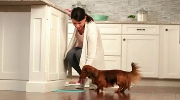 Purina Bella TV Spot, 'Dog Food Specially Made for Small Dogs' - Thumbnail 7