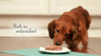 Purina Bella TV Spot, 'Dog Food Specially Made for Small Dogs' - Thumbnail 8