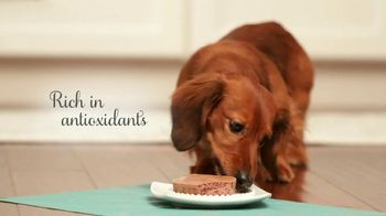 Purina Bella TV Spot, 'Dog Food Specially Made for Small Dogs' - Thumbnail 9