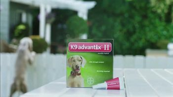 K9 Advantix II TV Spot, 'Neighbor Dogs' - Thumbnail 5