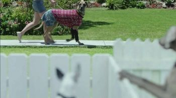 K9 Advantix II TV Spot, 'Neighbor Dogs' - Thumbnail 9
