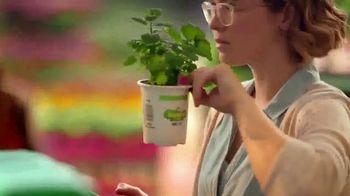The Home Depot Black Friday en Primavera TV Spot, 'Jardín' [Spanish] - Thumbnail 3