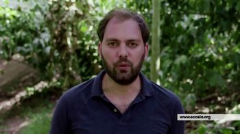 Ecosia TV Spot, 'Works Just Like Google'