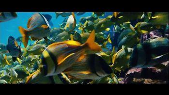 Atlantis Bahamas TV Spot, 'Endless Flow: Summer Savings' - Thumbnail 8