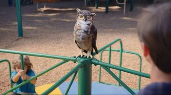 America's Best Contacts and Eyeglasses TV Spot, 'Playground' - 1630 commercial airings