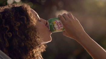 Canada Dry TV Spot, 'Cooler Hammock' Song by Wiz Khalifa - Thumbnail 7