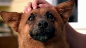 PETCO Foundation TV Spot, 'Pet Cancer Awareness Month' - Thumbnail 2
