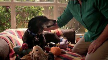 PETCO Foundation TV Spot, 'Pet Cancer Awareness Month' - Thumbnail 5