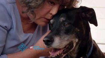 PETCO Foundation TV Spot, 'Pet Cancer Awareness Month' - Thumbnail 8