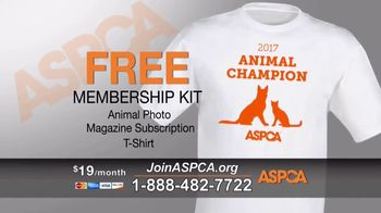 ASPCA TV Spot, 'Start Saving Animals' - Thumbnail 7