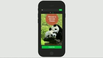GoDaddy GoCentral TV Spot, 'Panda Breaks the Internet' - Thumbnail 8