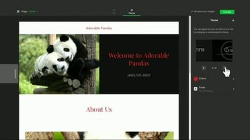 GoDaddy GoCentral TV Spot, 'Panda Breaks the Internet' - Thumbnail 5