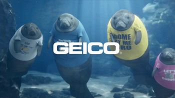 GEICO TV Spot, 'Manatee Shirts' - Thumbnail 10