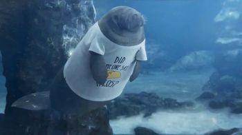 GEICO TV Spot, 'Manatee Shirts' - Thumbnail 3