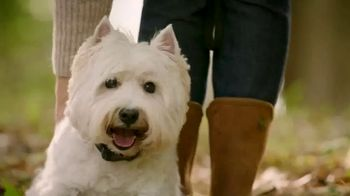 2018 HGTV Dream Home Giveaway TV Spot, 'Furry BFF'
