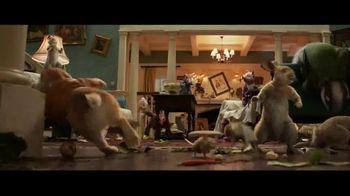Peter Rabbit - Alternate Trailer 10