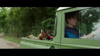 Peter Rabbit - Alternate Trailer 9