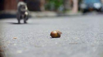 Volkswagen Tiguan TV Spot, \'Nuts\' [T1]