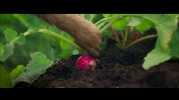Save the Food TV Spot, 'Peter Rabbit: Better Ate Than Never' - Thumbnail 3
