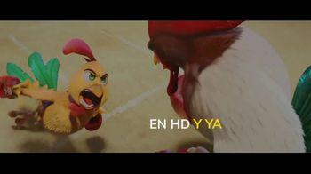 Pantaya TV Spot, 'Donde quieras y cuando quieras' [Spanish] - Thumbnail 4