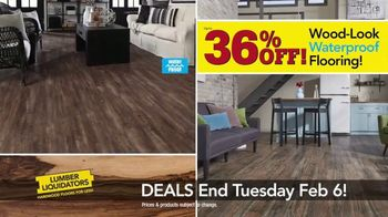 Lumber Liquidators TV Spot, 'Laminate Deals: February' - Thumbnail 6