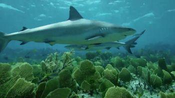 Oceana TV Spot, 'A Fighting Chance' Feat. Nina Dobrev - Thumbnail 4