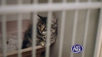 Cat's Pride TV Spot, 'Litter for Good: Help Millions' Feat. Katherine Heigl - Thumbnail 1