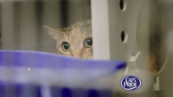 Cat's Pride TV Spot, 'Litter for Good: Help Millions' Feat. Katherine Heigl - Thumbnail 3