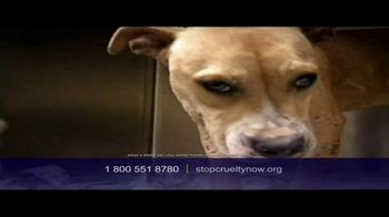 Humane Society, 'Stop Cruelty' Featuring Kaley Cuoco - Thumbnail 5