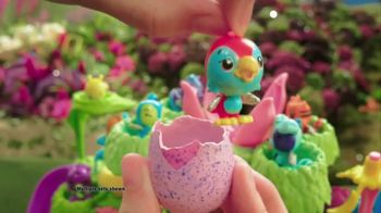 Hatchimals CollEGGtibles Hatchery Nursery TV Spot, 'Love' - Thumbnail 6