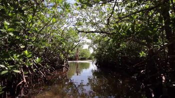 The Florida Keys & Key West TV Spot, 'Key Largo: Look Deep' - Thumbnail 2