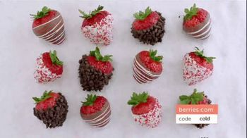 Shari's Berries TV Spot, 'The Season's Most Unforgettable Gifts' - Thumbnail 6