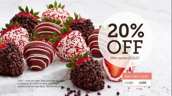 Shari's Berries TV Spot, 'The Season's Most Unforgettable Gifts' - 837 commercial airings