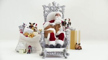 PetSmart TV Spot, 'Free Photo With Santa' - Thumbnail 1