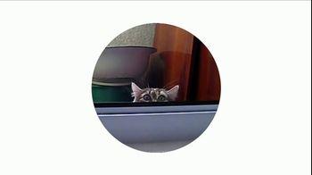 Google Home Mini TV Spot, 'Streaming' Song by Ramin Djawadi