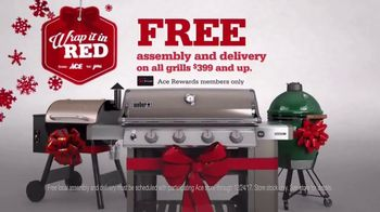 ACE Hardware Wrap It in Red TV Spot, 'Surprise Delivery' - Thumbnail 7