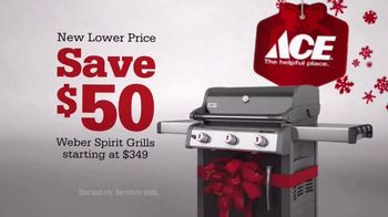 ACE Hardware Wrap It in Red TV Spot, 'Surprise Delivery' - Thumbnail 8
