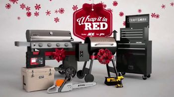 ACE Hardware Wrap It in Red TV Spot, 'Gift for Dad' - Thumbnail 9