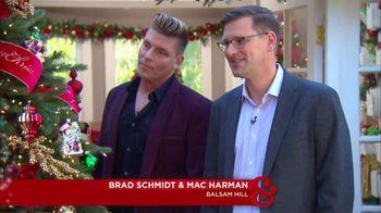 Balsam Hill TV Spot, 'Hallmark Channel: Christmas Tree Decorating Tips'