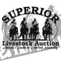 Superior Livestock Auction