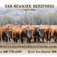 Van Newkirk Herefords